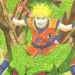 Naruto-Shenron-goku-costume-kishimoto