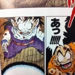 test-des-mangas-dragon-ball-full-color-22