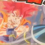 Goku-Super-Saiyan-God-2