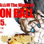 dragon-ball-akira-toriyama-world-dragon-ball-3