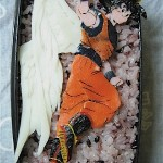 bento-dragon-ball-25