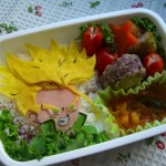 bento-dragon-ball-38