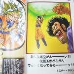 dragon-ball-chogashu-16