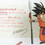 dragon-ball-chogashu-20
