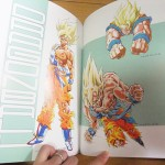dragon-ball-chogashu-9