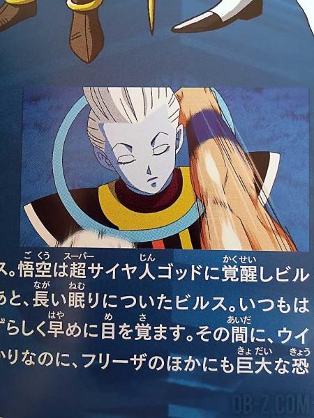 Dragon Ball Resurrection F Guide 13
