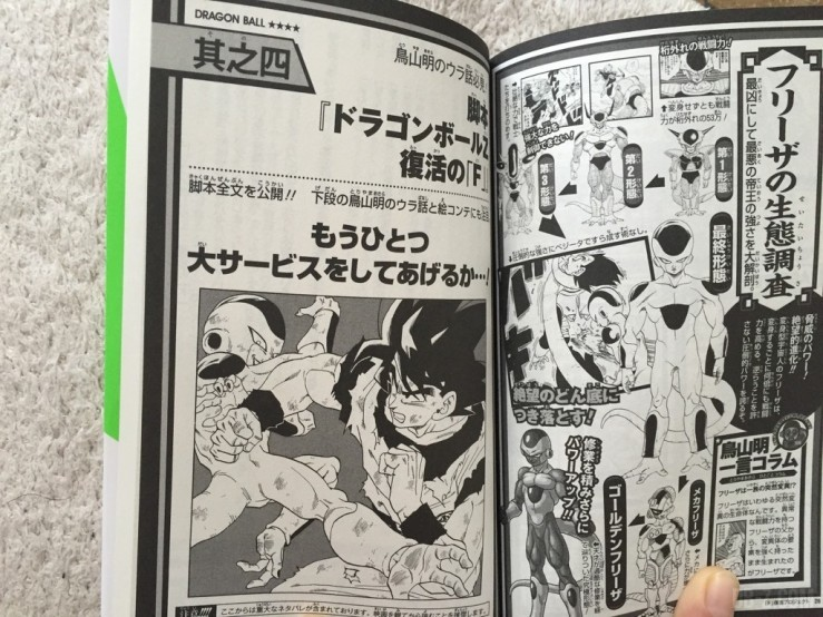 Dragon Ball Volume F 10