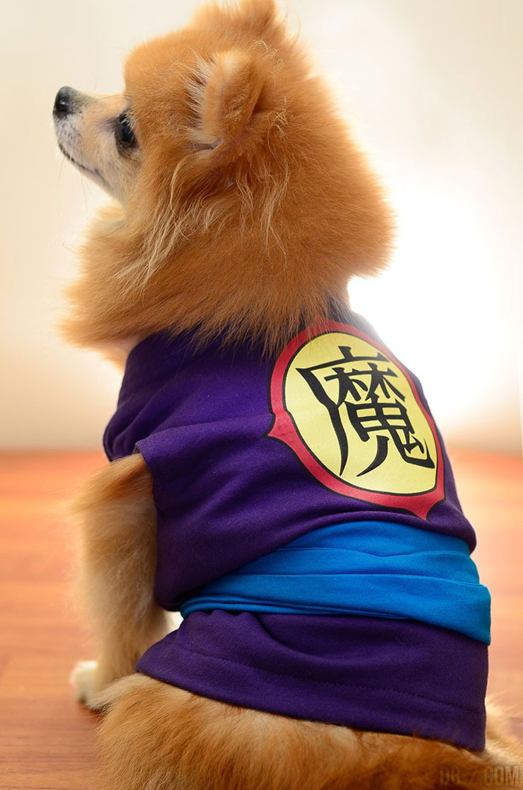Cosplay Dragon Ball Chien (Piccolo)