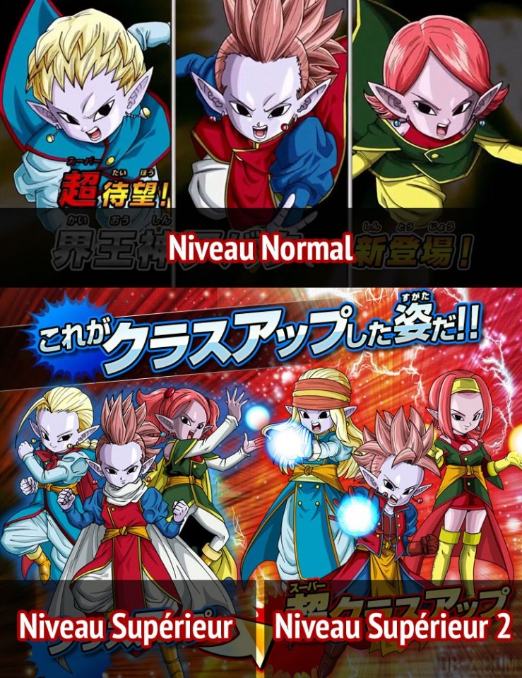Dragon Ball Heroes : Evolution Avatar Kaioshin