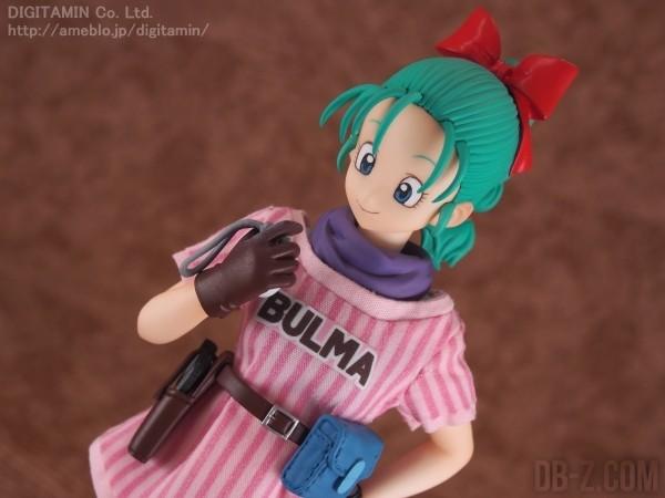 DOD Bulma