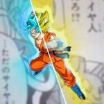 Goku Super Saiyan ou SSGSS