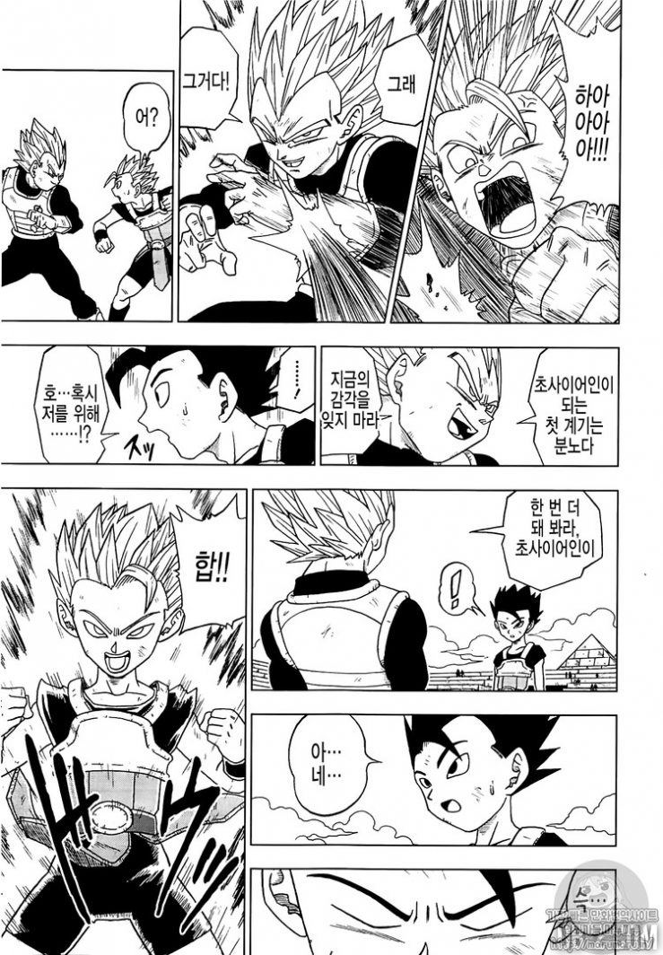 Dragon Ball Super CHAPITRE 12 - Page 13