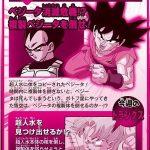 Dragon Ball Super Episode 46 Preview