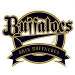 Orix Buffaloes