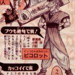 Piccolotto Fusion entre Piccolo et Goku