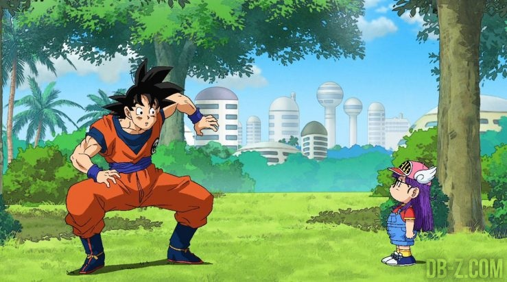 Dragon Ball Super : Goku & Arale
