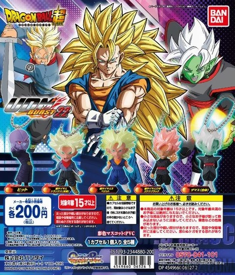 Flyer des UDM Burst 22