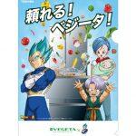 Classeur Vegeta x Toshiba