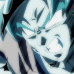 Dragon Ball Super Episode 109 110 205 Goku