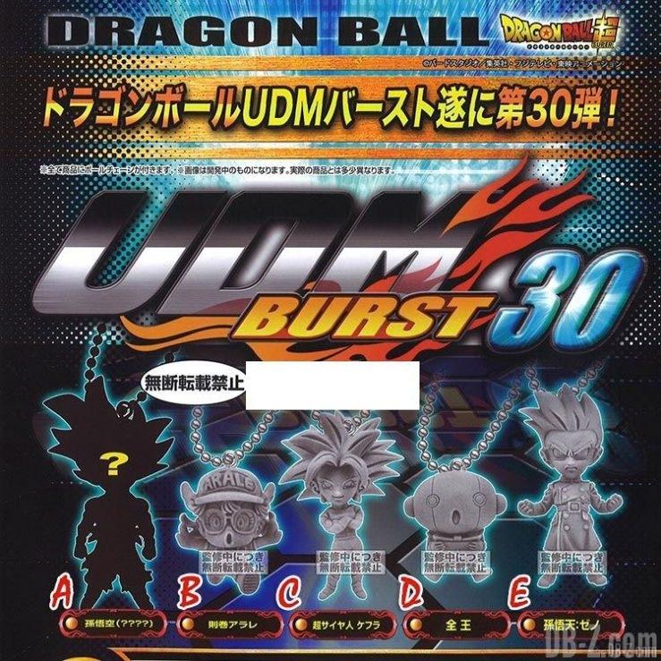 UDM Burst 30 - Aperçu