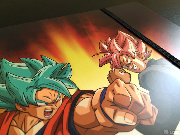 Chemise à élastique+ 3 rabats, 2 visuels assortis - Dragon Ball Super 9