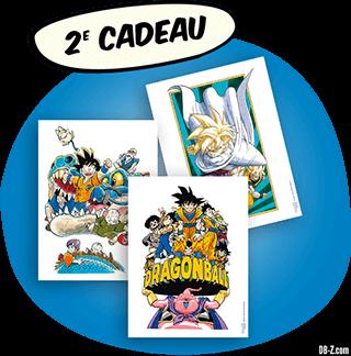 Dragon Ball Intégrale Grand Format Hachette - Cadeau 2