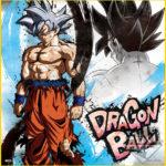 Shikishi Goku Ultra Instinct