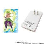 Adaptateur secteur USB Broly 2