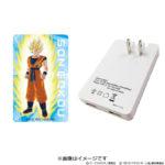 Adaptateur secteur USB Goku 2