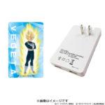 Adaptateur secteur USB Vegeta 2