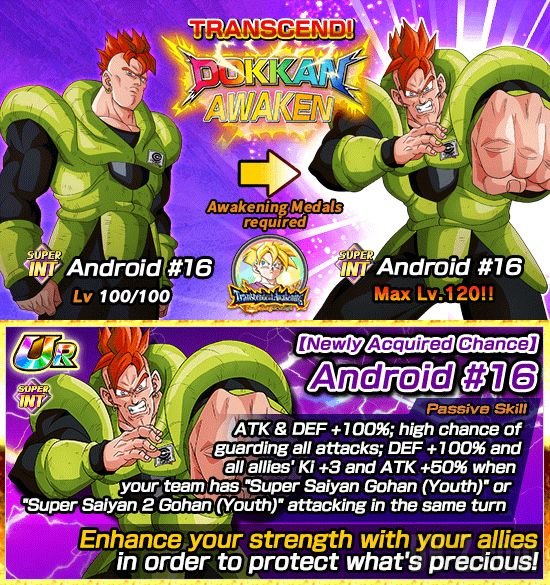 Dokkan Transcendent Awakening Surpassing the Strongest 3