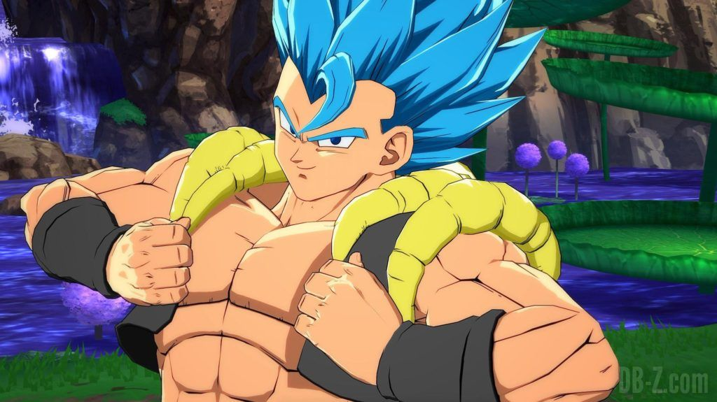 Gogeta Blue SSGSS Dragon Ball FighterZ