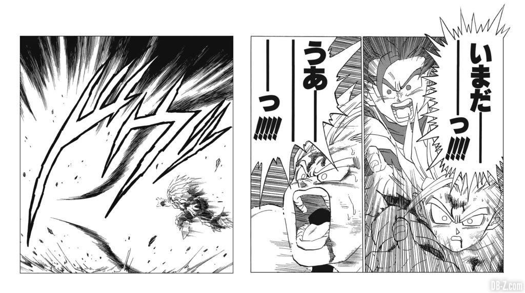 Kamehameha Pere fils Manga Dragon Ball