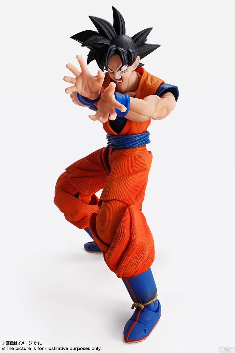 Imagination Works Goku