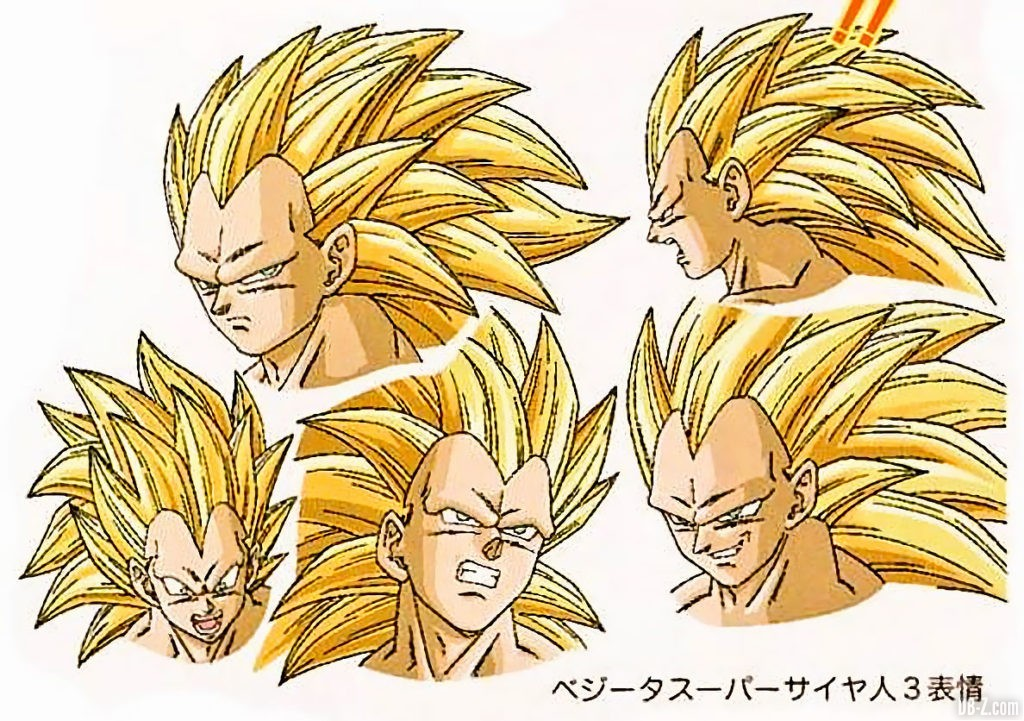 Vegeta Super Saiyan 3 Raging Blast Tadayoshi Yamamuro