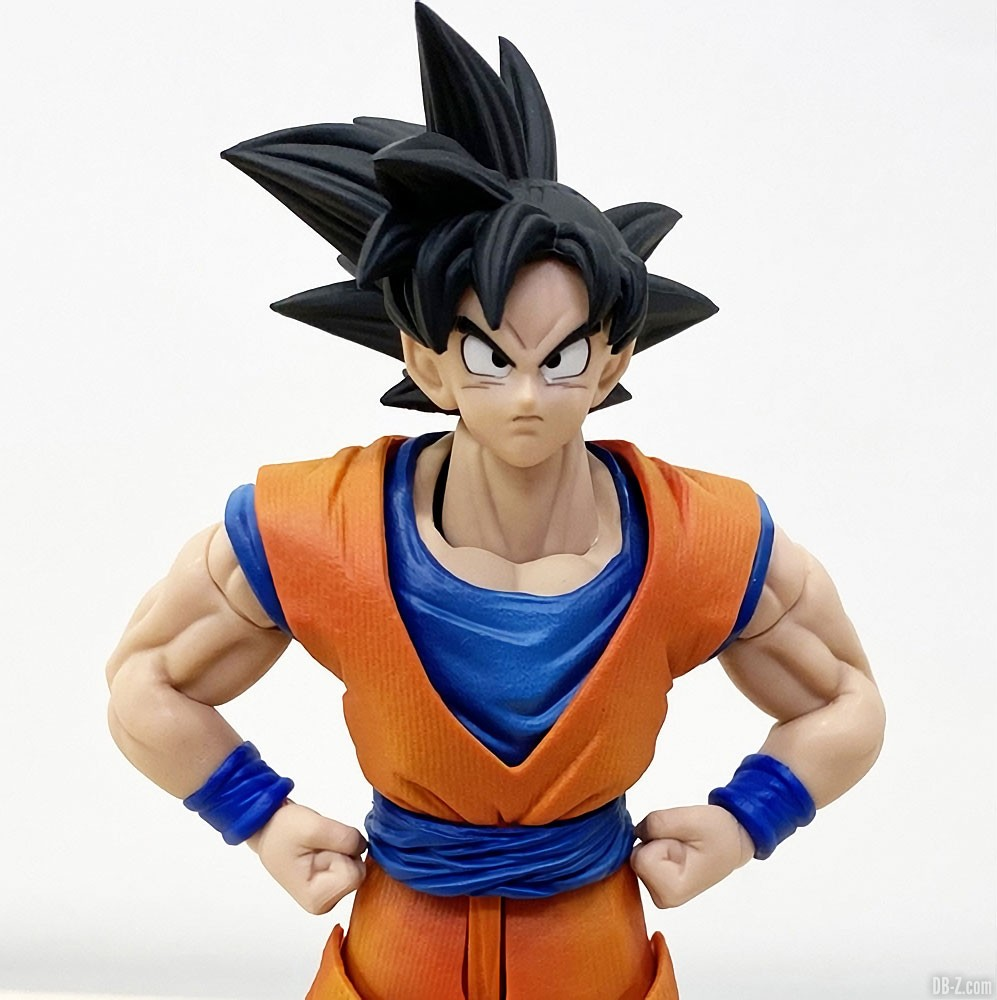 Imagination Works Son Goku Image 1