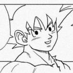 Correction Akira Toriyama Dragon Ball Super