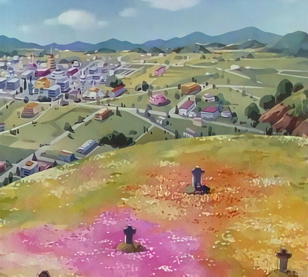 Cimetiere de Goku