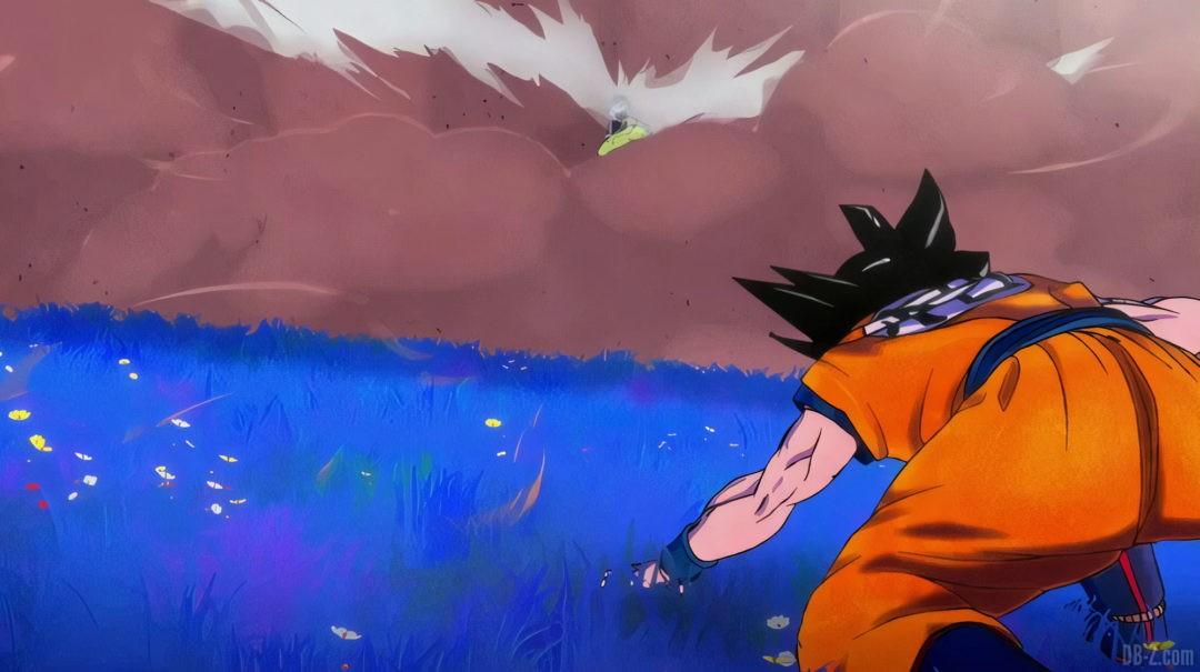 Goku vs broly Super Hero